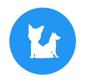 Application mobile Android PetsFinder